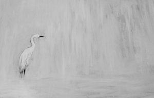 Little Egret Oil on Canvas 81x60cm